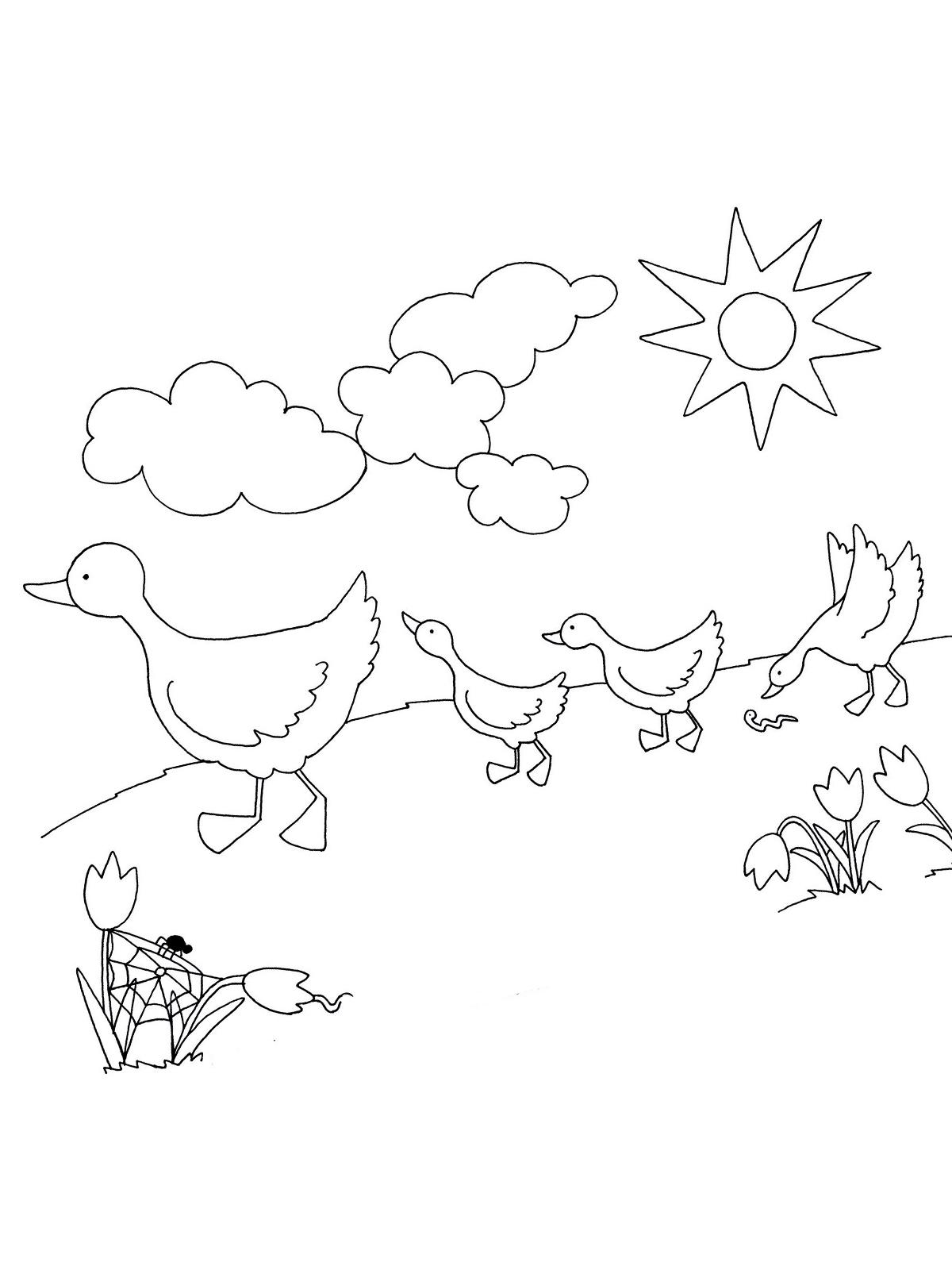 Ausmalbilder Zum Ausdrucken Frühling : Ausmalbild Fr Hling 23 Zum Ausdrucken M Rchen Aus Aller Welt Der