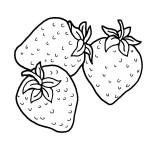 Ausmalbilder Erdbeere 3 kostenlos