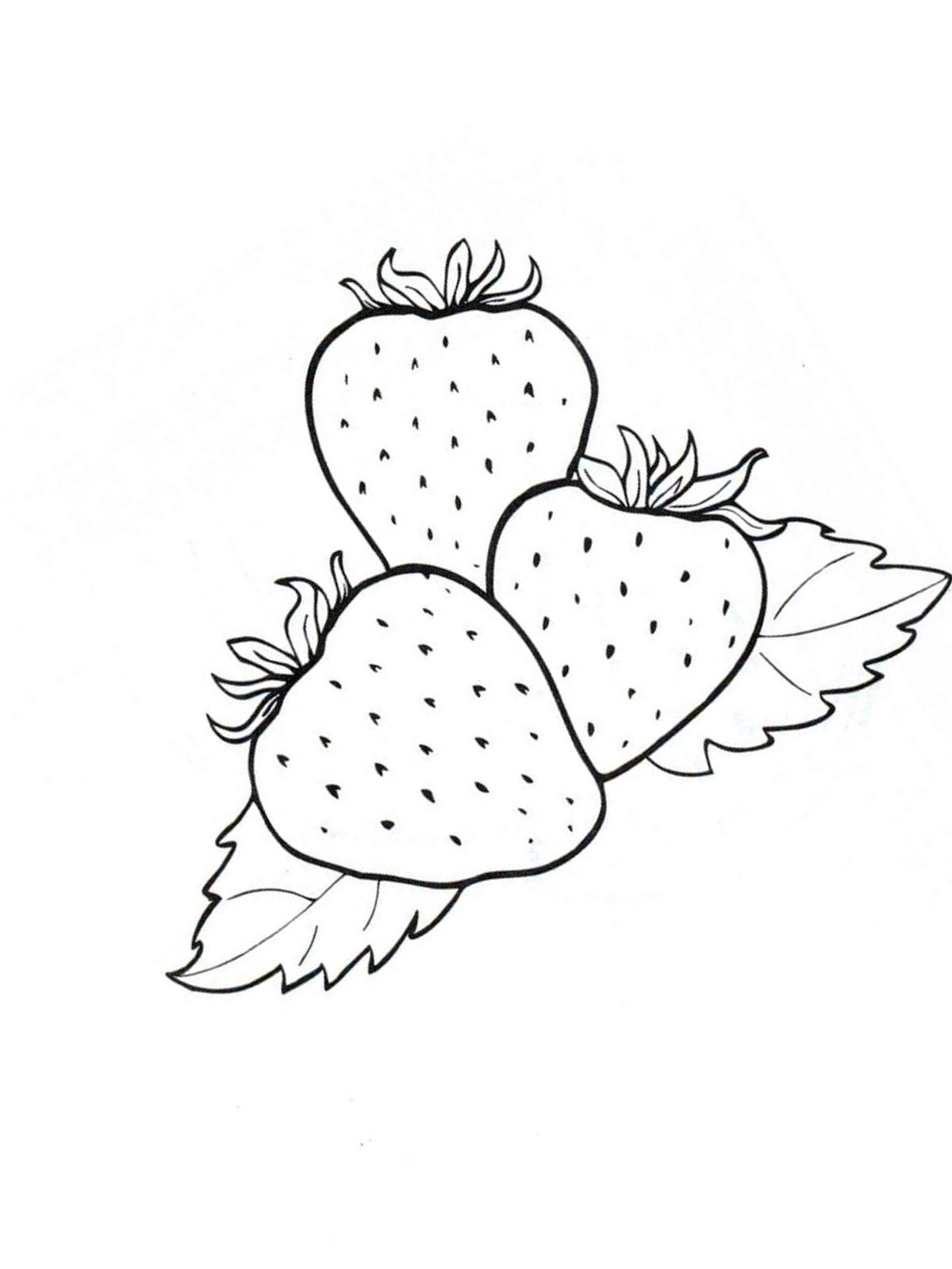ausmalbilder, malvorlagen - erdbeere kostenlos zum