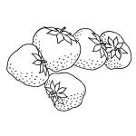 Malvorlagen Erdbeere 14 kostenlos