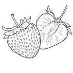 Malvorlagen Erdbeere 19 kostenlos