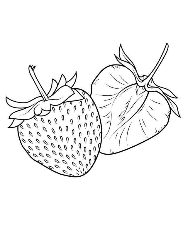 malvorlagen erdbeere 19 kostenlos  märchen aus aller welt