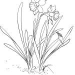 Malvorlagen Frühling 14 kostenlos