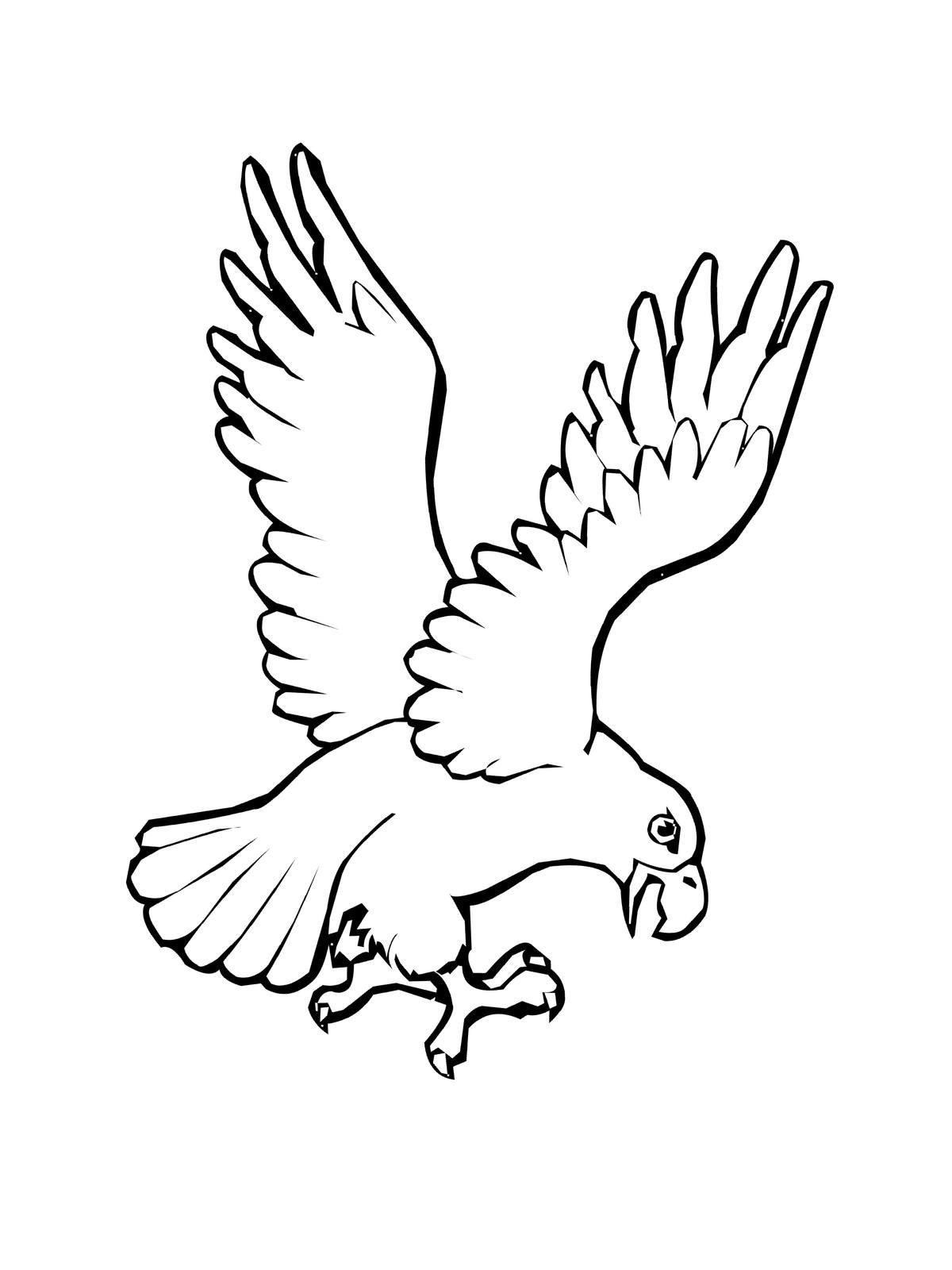 Ausmalbilder, Malvorlagen von Adler kostenlos zum Ausdrucken ...