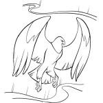 Adler 8
