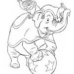 Akrobaten im Zirkus 3