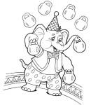 Akrobaten im Zirkus 5