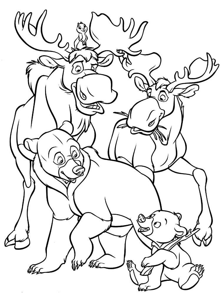 Ausmalbilder, Malvorlagen von Bärenbrüder kostenlos zum Ausdrucken ...