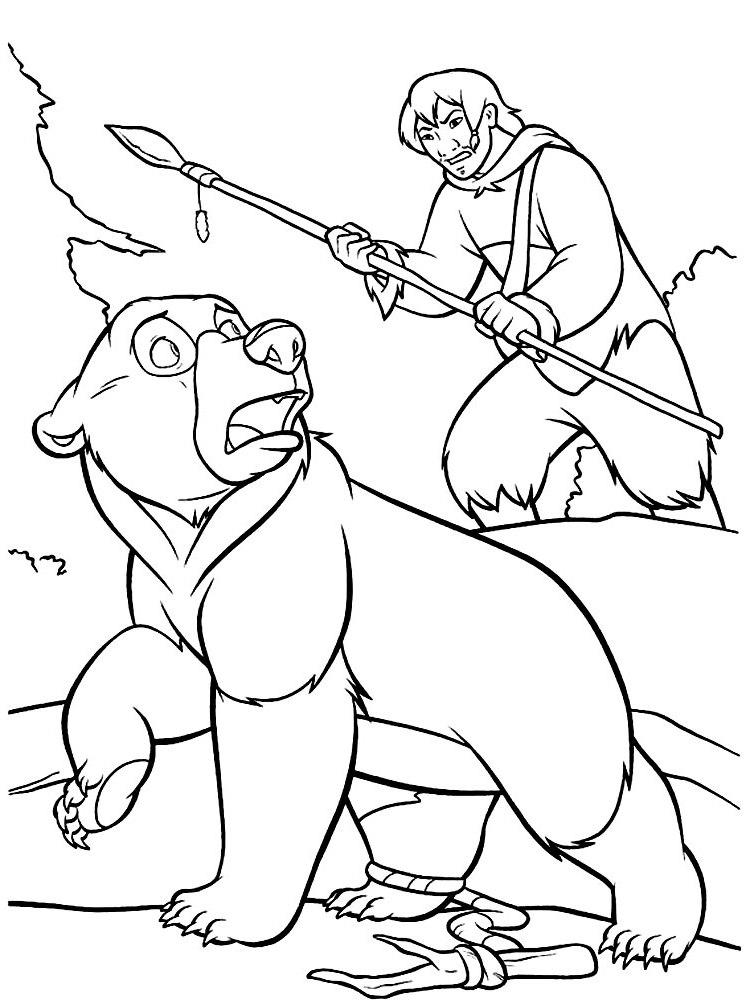 Ausmalbilder Malvorlagen Von Bärenbrüder Kostenlos Zum Ausdrucken