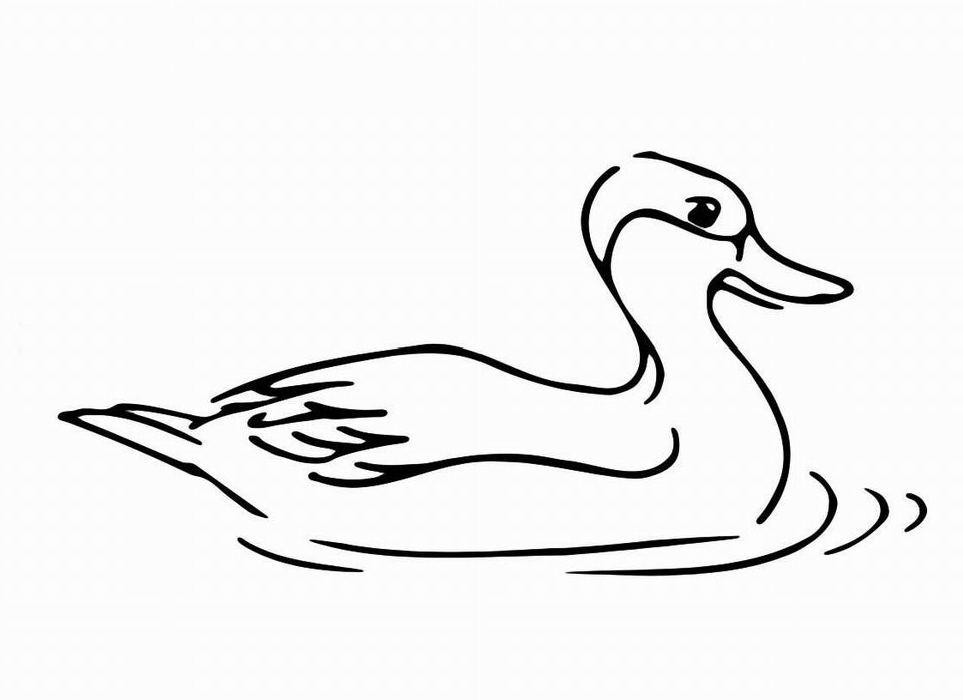Ausmalbilder, Malvorlagen – Ente kostenlos zum Ausdrucken | Märchen ...