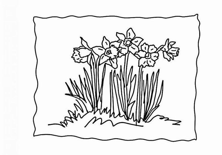 ausmalbilder malvorlagen  gras kostenlos zum ausdrucken