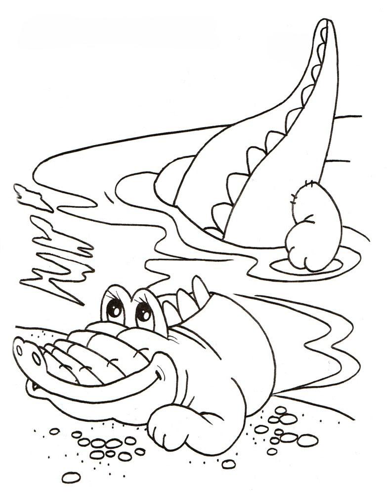 Ausmalbilder, Malvorlagen – Krokodil kostenlos zum Ausdrucken ...