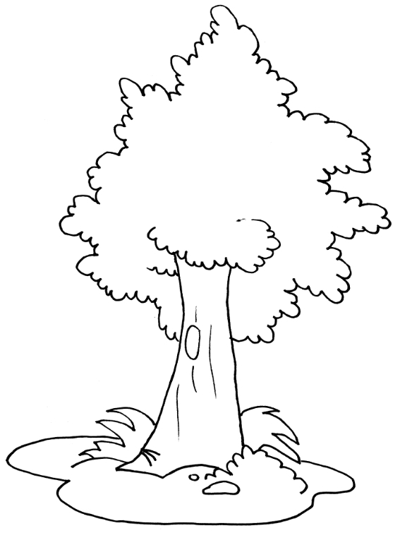 Drawing Of Nature Without Color
