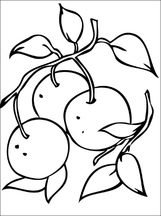 ausmalbilder malvorlagen  mandarine kostenlos zum