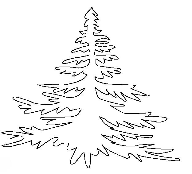 ausmalbilder malvorlagen  nadelbäume kostenlos zum
