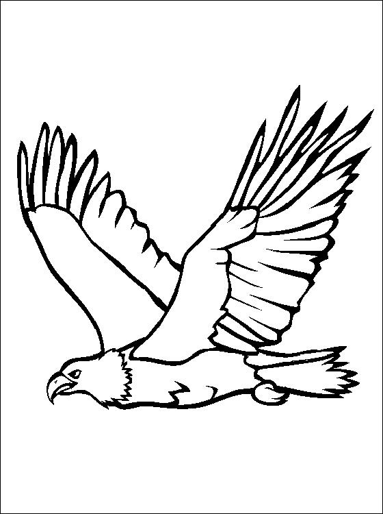Eagle Cartoon Coloring Pages